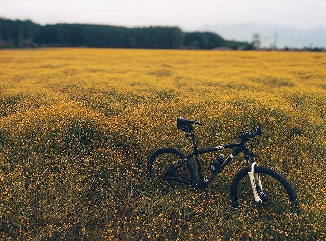 Neuzer kerékpár nagyszerű felszereltséggel